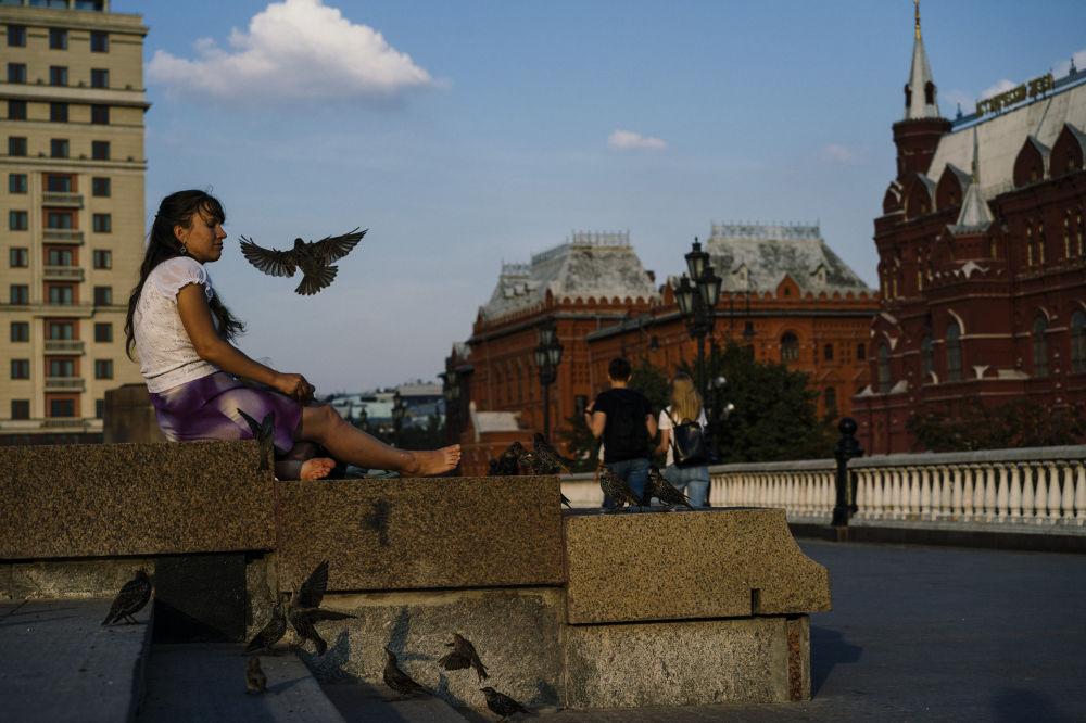 Kobieta karmi ptaki w centrum Moskwy