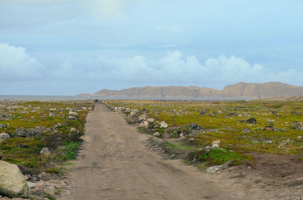 Tundry w obwodzie murmańskim