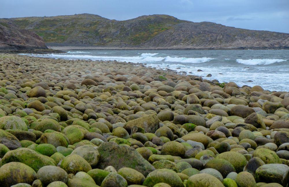 Wybrzeże Morza Barentsa w obwodzie murmańskim