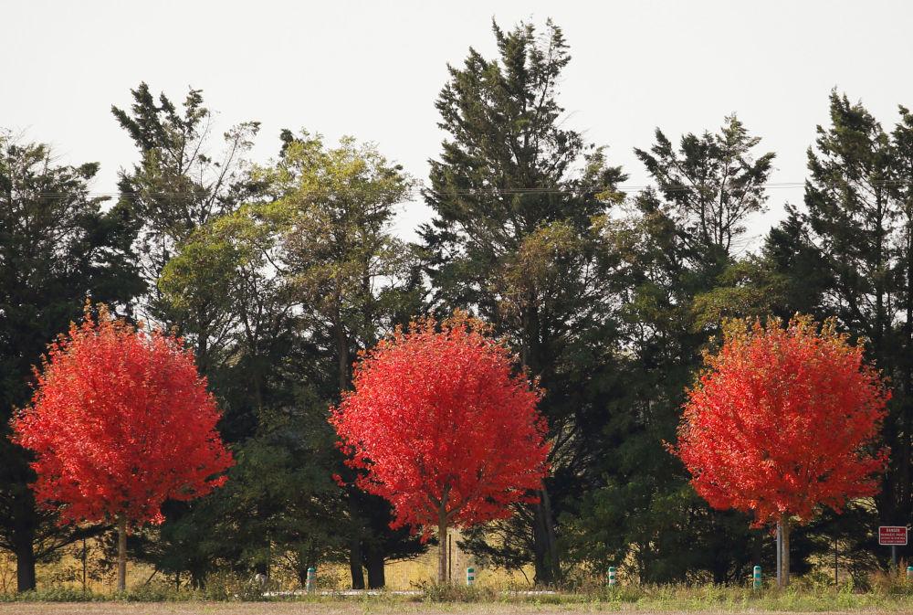 Jesień we francuskiej wsi