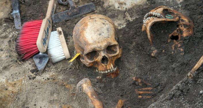Szczątki żołnierzy radzieckich, którzy walczyli na froncie II wojny światowej, znalezione w czasie prac wykopaliskowych na północnym-wschodzie Niemiec