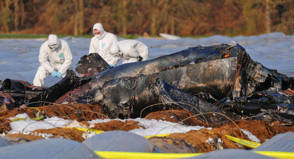Katastrofa samolotu rosyjskich linii lotniczych S7 w Niemczech
