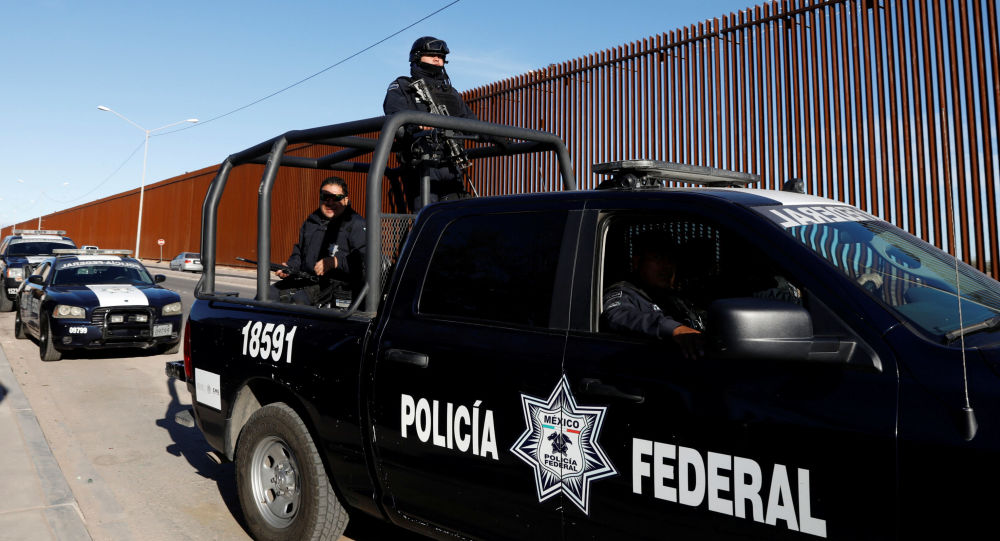 Federalna policja Meksyku