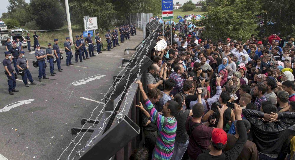 Migranci na granicy węgiersko-serbskiej