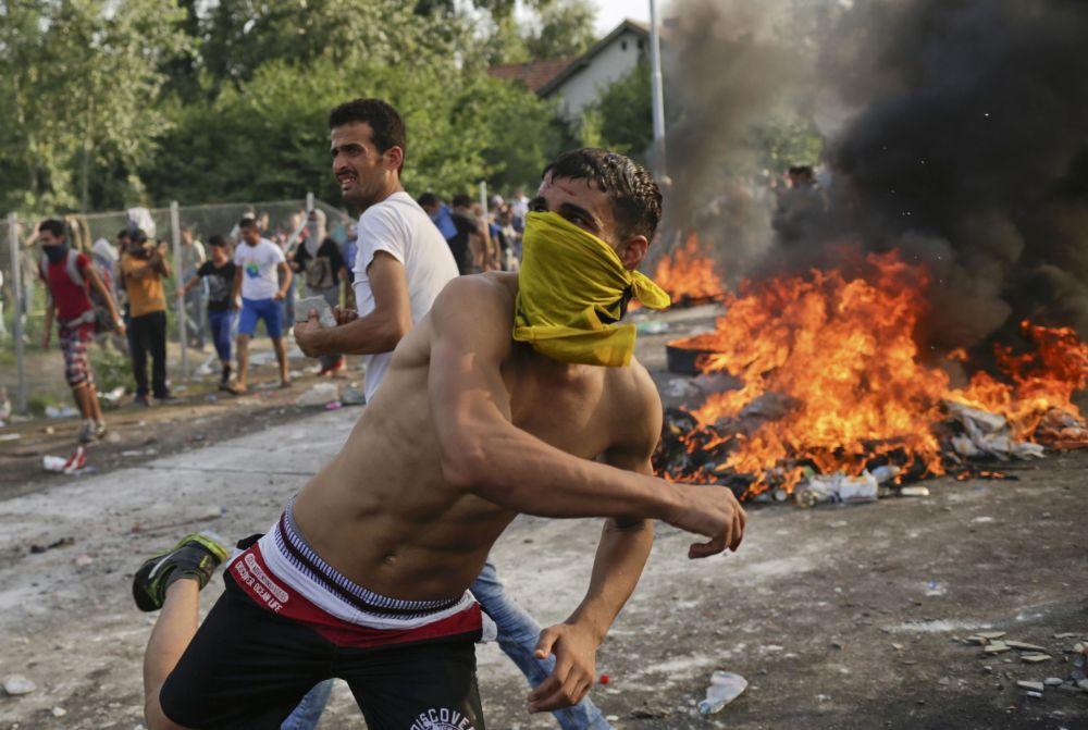 Zamieszki na serbsko-węgierskiej granicy