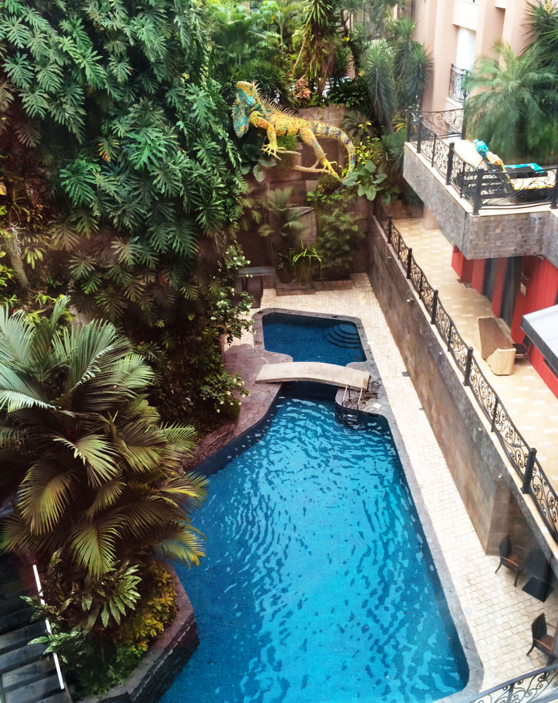 Widok z okna w hotelu w Ekwadorze