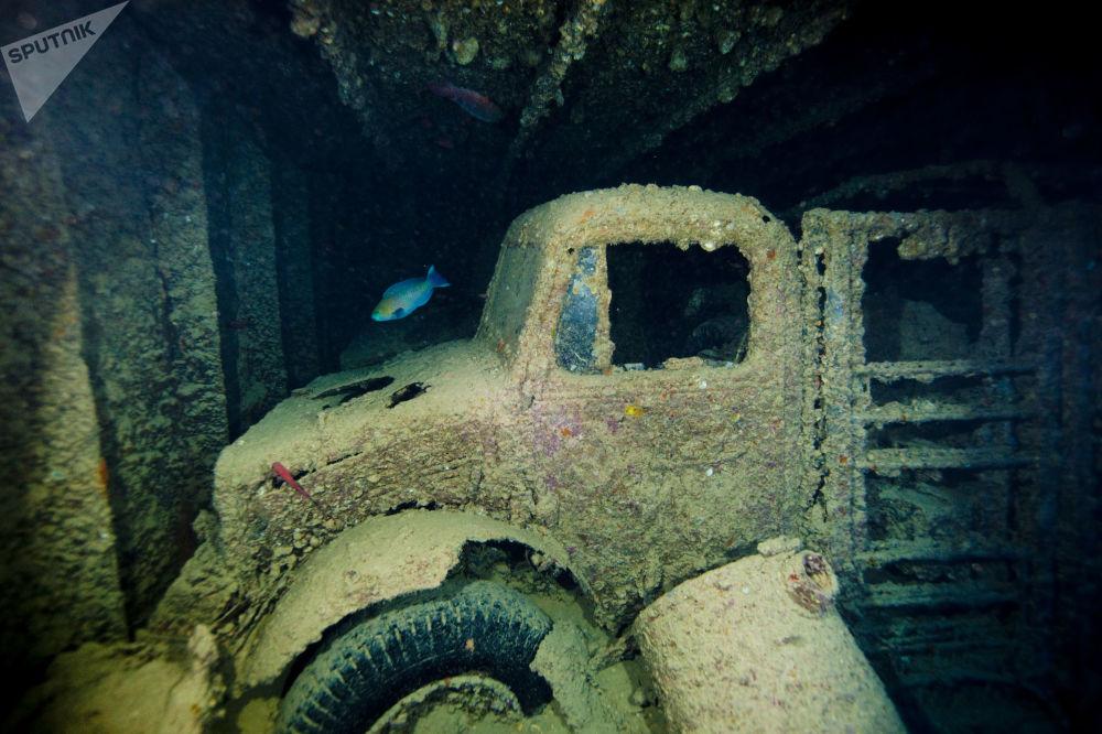 """Ładunek statku handlowego """"Thistlegorm"""", który został zatopiony w 1941 roku, jest jednym z najbardziej wyjątkowych podwodnych artefaktów w Zatoce Sueskiej."""