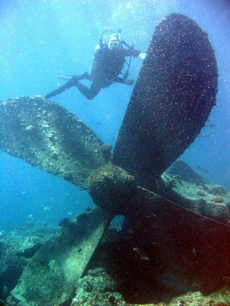 Zatopiony okręt. Atol Atol Pearl i Hermes, Hawaje.