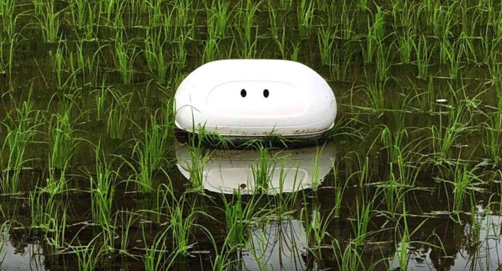 Japoski robot The Aigamo