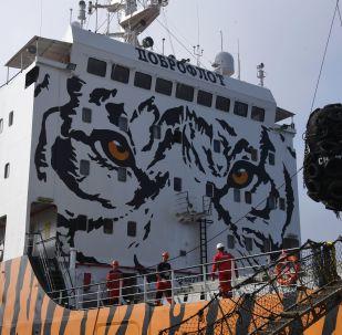 Morski statek Symfonia ozdobiony wizerunkiem amurskiego tygrysa