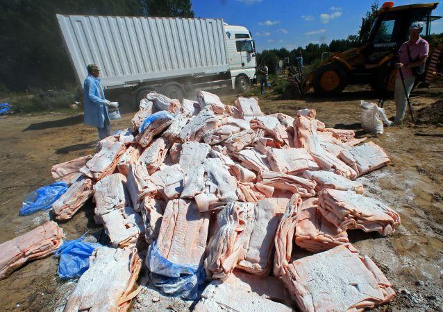 Zniszczenie sankcjonowanych produktów przejętych na rosyjsko-polskiej granicy ,Kaliningrad. Zdjęcie archiwalne