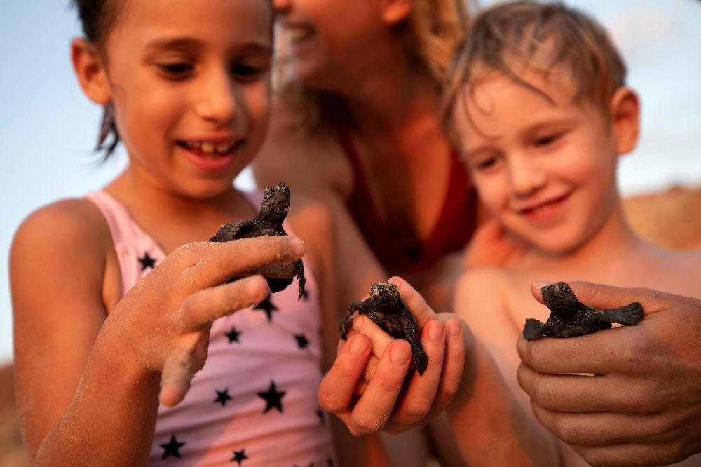 Dzieci trzymające w rękach młode żółwie morskie w Centrum Ratowania Żółwi Morskich w Tel Awiwie.