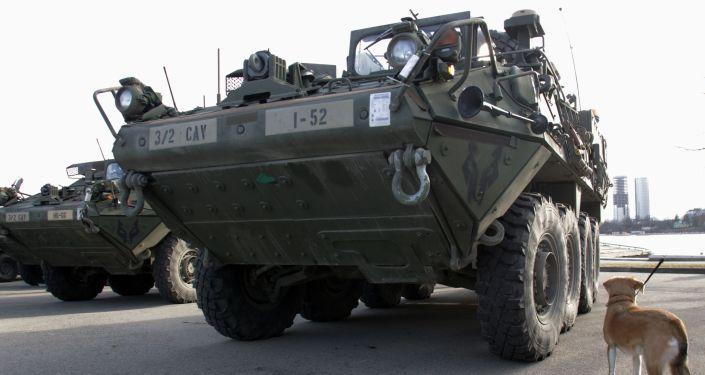 Amerykański transporter opancerzony Stryker