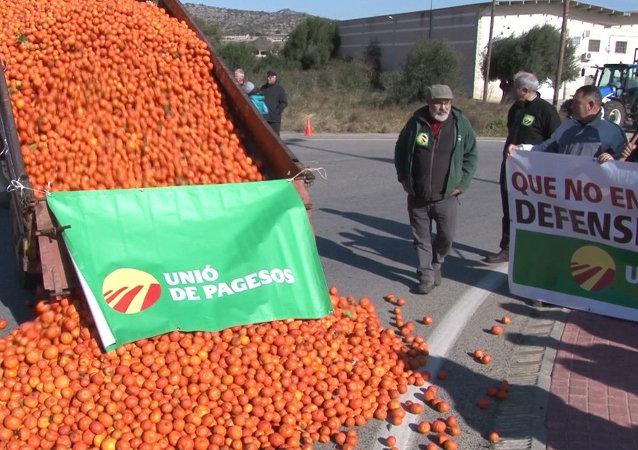 Hiszpańscy rolnicy dotknięci przez sankcje wobec Rosji wyrzucają na ulice zgniłe owoce