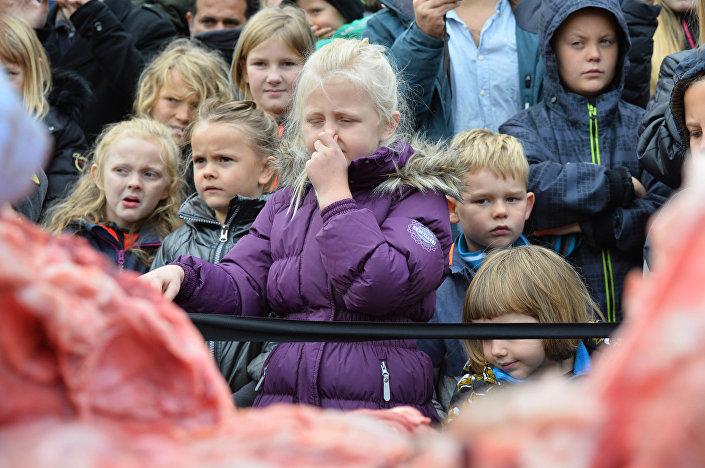 Dzieci na sekcji zwłok lwa w ZOO w Odense