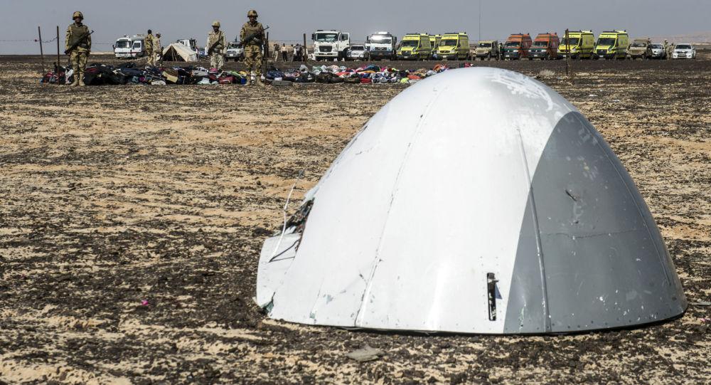Fragmenty rosyjskiego samolotu pasażerskiego Airbus A321 który rozbił się na Półwyspie Synaj