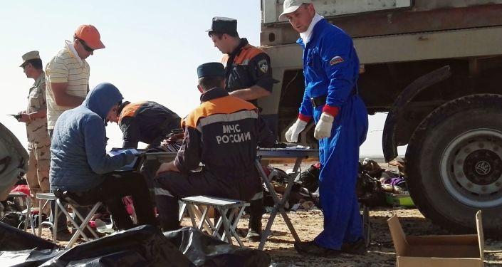 Pracownicy MSN Rosji na miejscu katastrofy rosyjskiego samolotu Airbus A321 w Egipcie