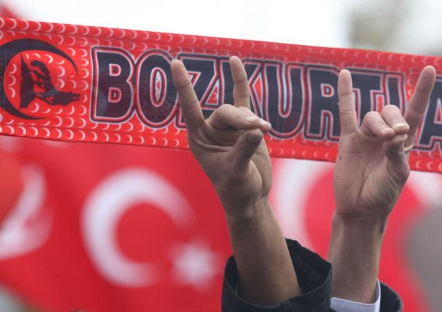 Zwolennicy tureckiej młodzieżowej organizacji ultraprawicowych nacjonalistów Bozkurt (Szare Wilki) z charakterystycznym gestem