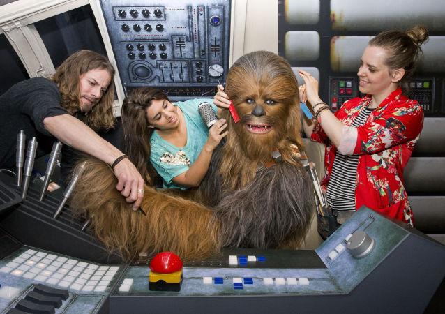 Personel Muzeum Madame Tussauds czesze Chewbacce, postać z Gwiezdnych Wojen