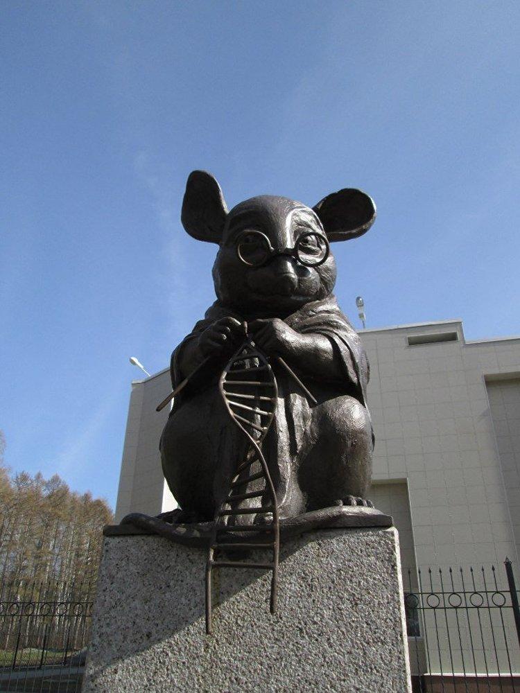 Pomnik myszy laboratoryjnej