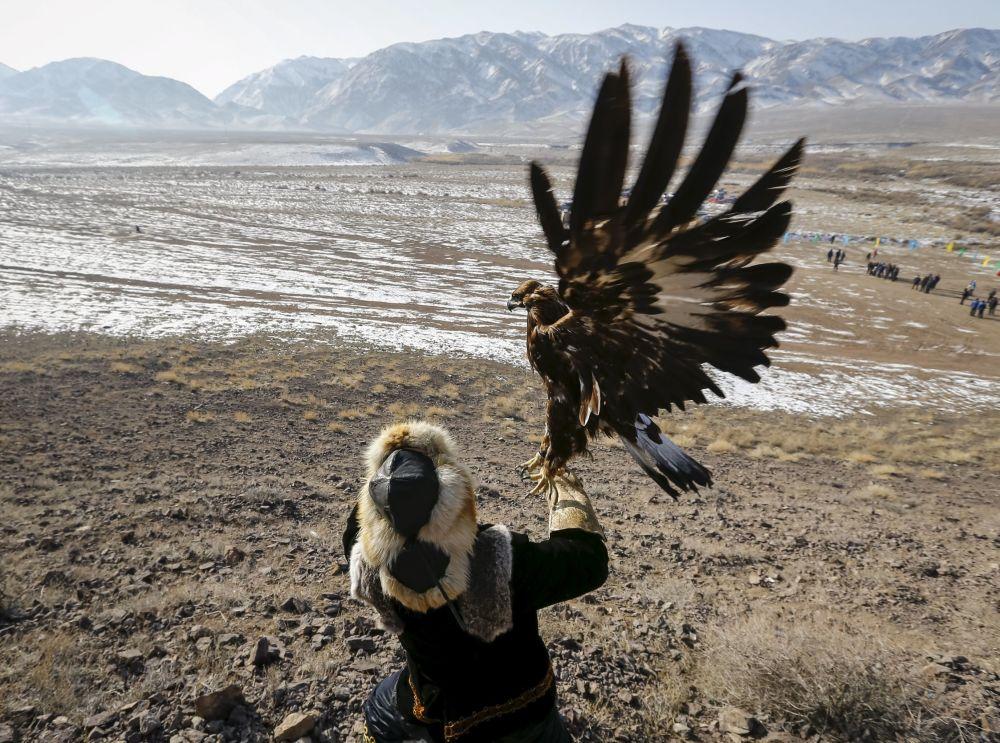 Myśliwy z berkutem podczas tradycyjnych zawodów myśliwskich w miejscowości Nura w Kazachstanie