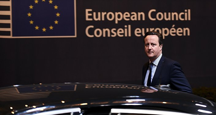 British Prime Minister David Cameron gets into his car as he leaves a European Union leaders summit, in Brussels, Belgium, early February 19, 2016.