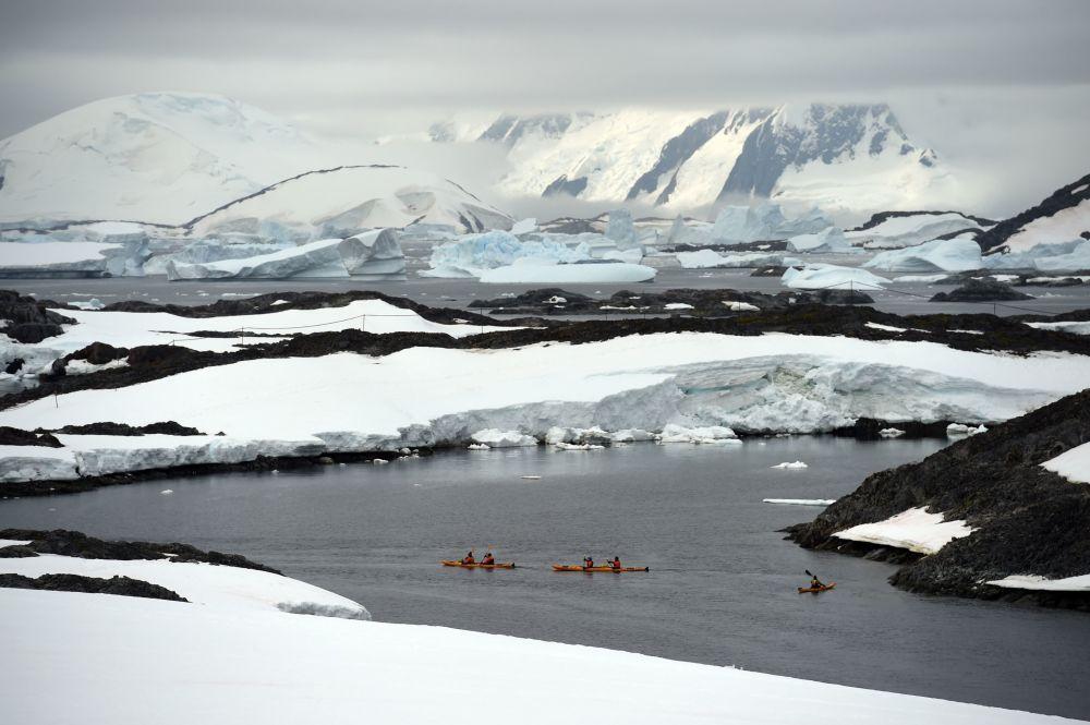 Kajakarze w otoczeniu gór lodowych na Antarktydzie