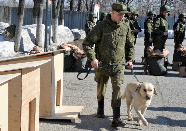 Przygotowanie do wysłania saperów Ministerstwa Obrony Rosji do Syrii w celu rozminowania Palmyry