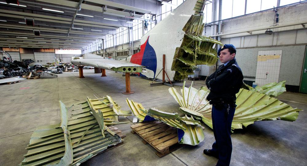 Holenderski żołnierz stoi obok szczątków wraku MH17