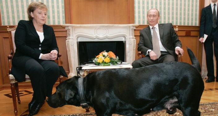 Kanclerz Niemiec Angela Merkel i prezydent Rosji Władimir Putin