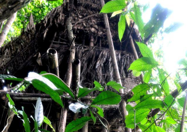 Szałas w wietnamskiej dżungli, w którym żyli Wan Than i Ho Wan Lang