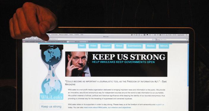 Strona Wikileaks