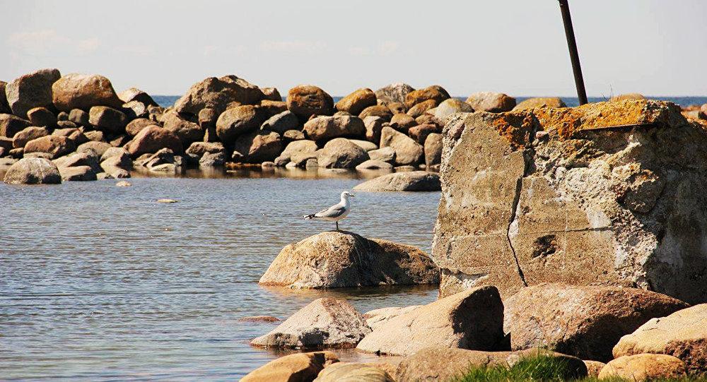 Wyspa Bolszoj Tiuters niedaleko wyspy Gogland.