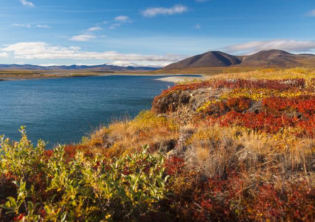 Rzeka Amguema na Czuokotce. Rosja