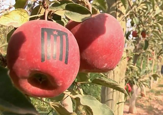 Separatystyczne jabłka