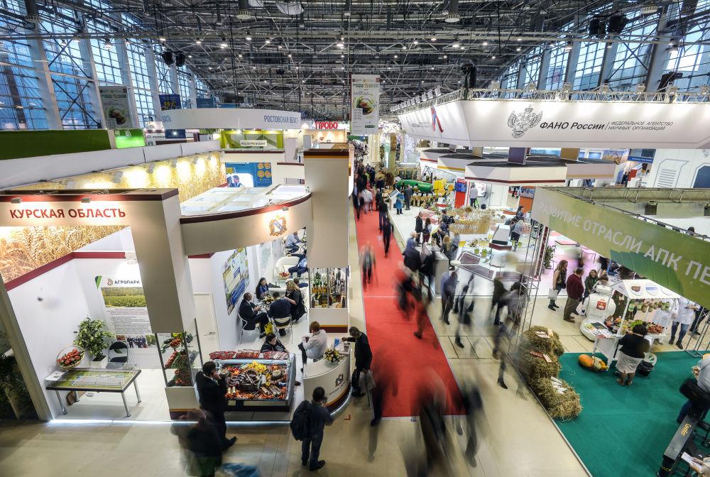 Międzynarodowa część ekspozycji zaprezentowana przez przedsiębiorstwa i stoiska zbiorowe z Abchazji, Białorusi, Ukrainy, Niemiec, Włoch, Wielkiej Brytanii, Holandii, Japonii.