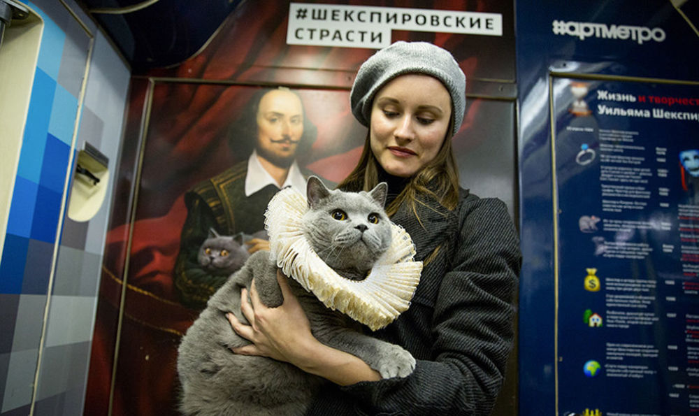 W jednym z wagonów pociągu można zobaczyć portret Szekspira, trzymającego na rękach kota o żółtych oczach.