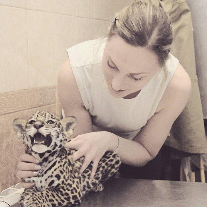 Malutki jaguar.