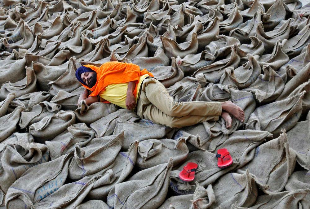 Rolnik leży na workach z ryżem na rynku sprzedaży hurtowej w Czandigarh