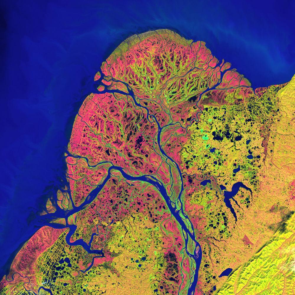 """Widok na narodowy rezerwat dzikiej przyrody """"Delta Jukon"""" na Alasce z kosmosu."""