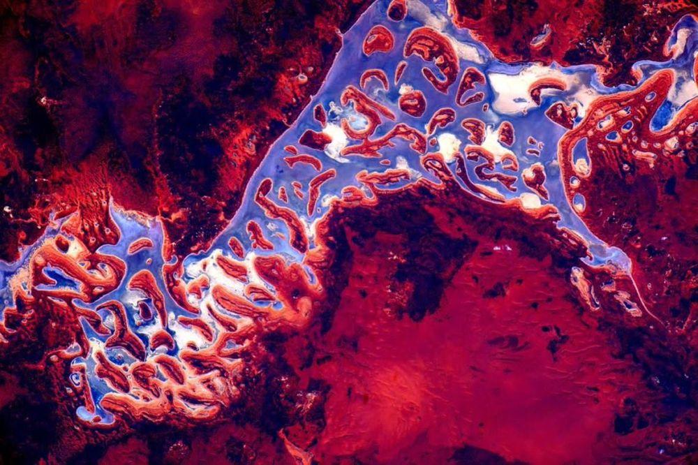 Zdjęcie Australii wykonane przez astronautę Scotta Kelly'ego z Międzynarodowej Stacji Kosmicznej.