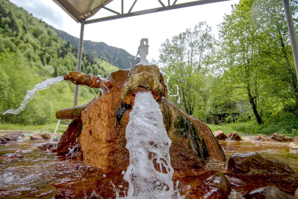 Najbardziej znane źródło w Osetii Południowej to Bagiata.