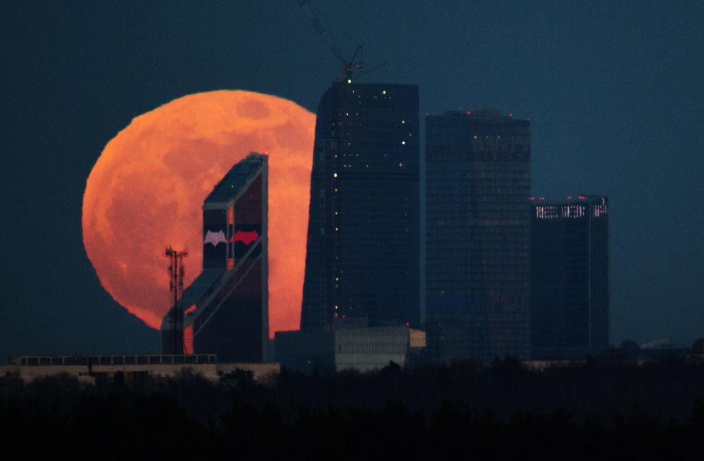 Pełnia księżyca nad moskiewskim City