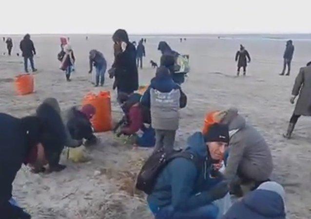 Cała plaża pokryta Kinder Niespodziankami