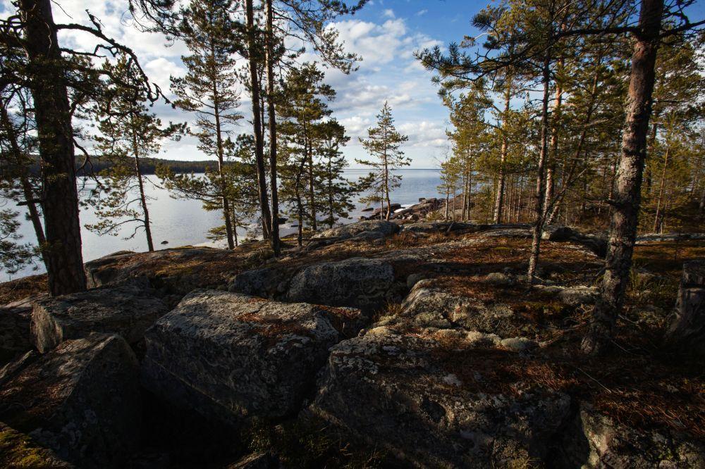 Widok na jezioro Onega w Petrozawodzku