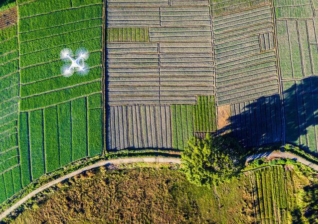 Zdjęcie Widmo Ziemi. Trzecie miejsce wśród amatorów w kategorii Drony w użyciu.