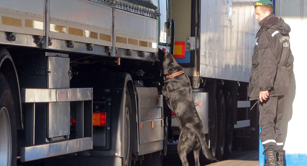 Kynolog z psem służbowym sprawdza samochody na przejściu granicznym Kozłowicze w obwodzie brzeskim