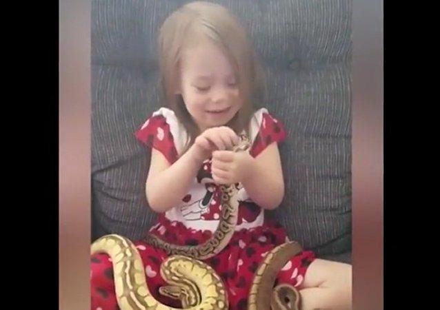 Trzyletnia Amerykanka bawi się z pytonami królewskimi