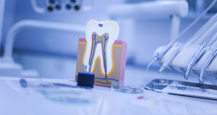 Model zęba
