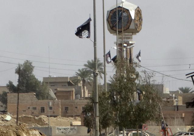 Flaga PI w Iraku